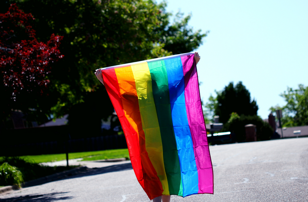 Image of a person holding a gay pride flag.