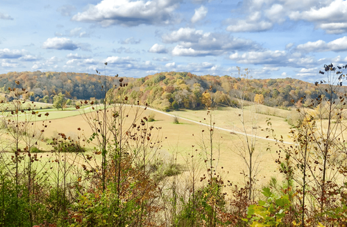 Image of rolling hills on a sunny day in Tennessee in the fall