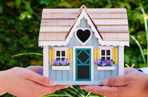 Hands holding a toy house